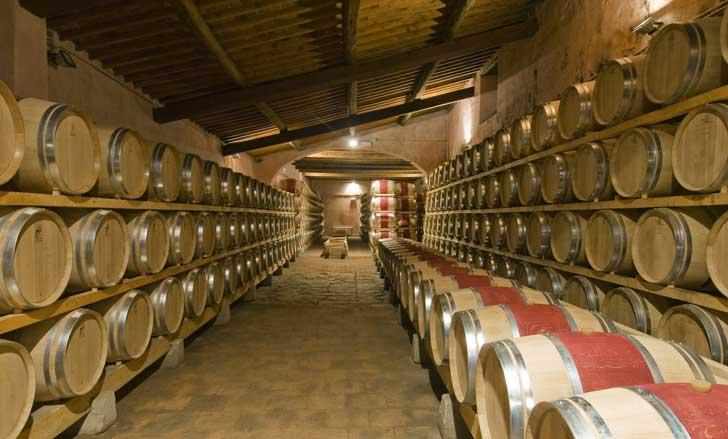 Lịch sử rượu vang ý - Thanh Thuy Co