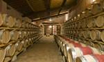 CANTINE STORICHE DI NIPOZZANO - the historical cellars of the Castle-4440842188